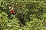 Fiji Zipline Rainforest Adventure!
