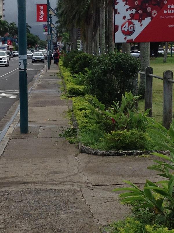 Suva10