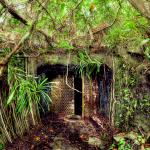 Fiji's Underground World