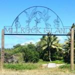 Mill Rock Island
